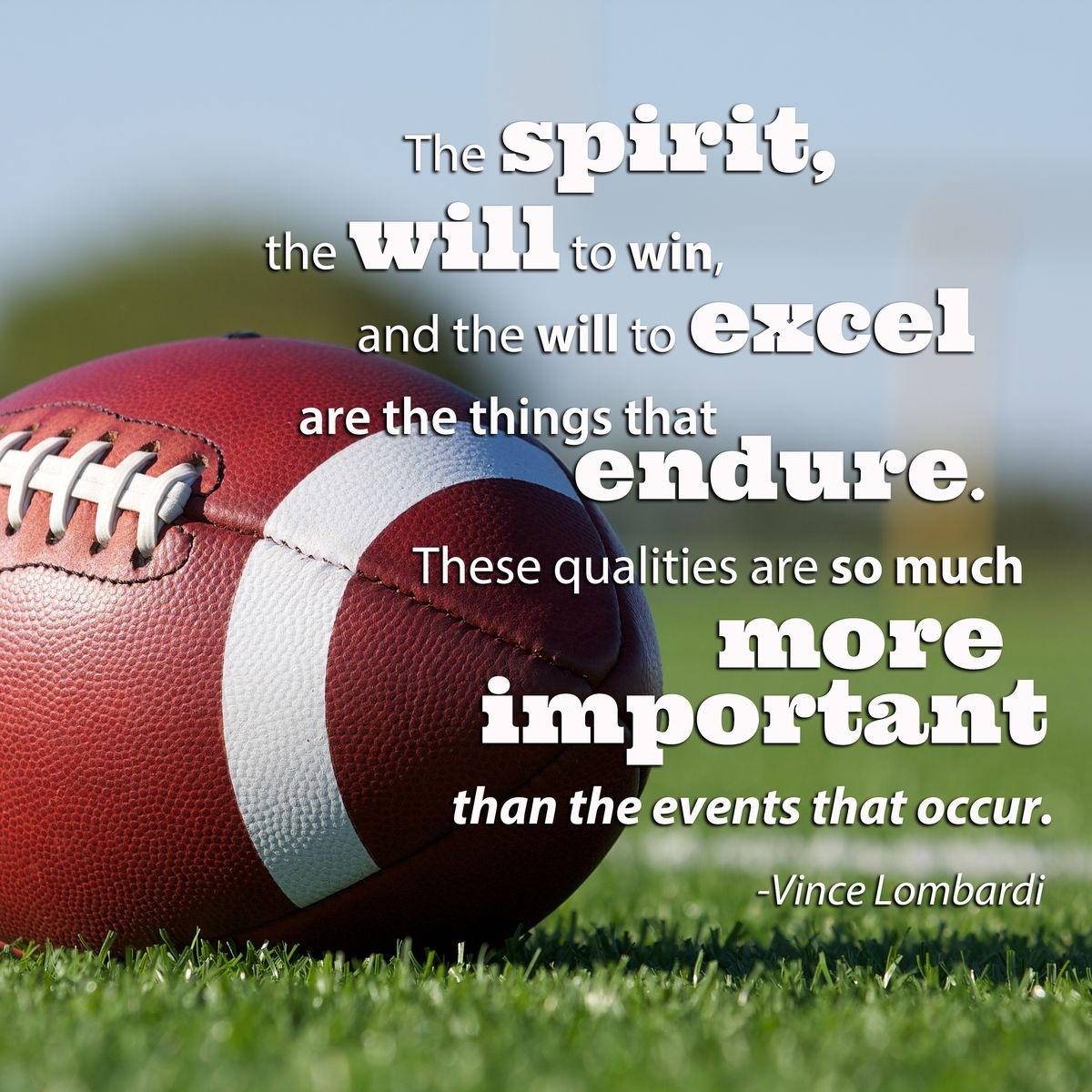 Football Training Motivational Quotes: Panther Football Quotes Motivational. QuotesGram