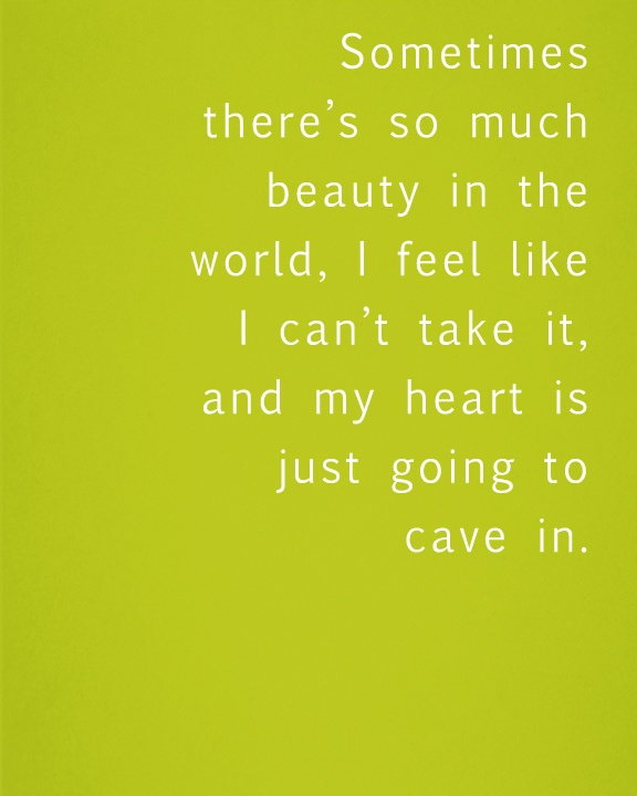 American Beauty Beauty Quotes So Much. QuotesGram