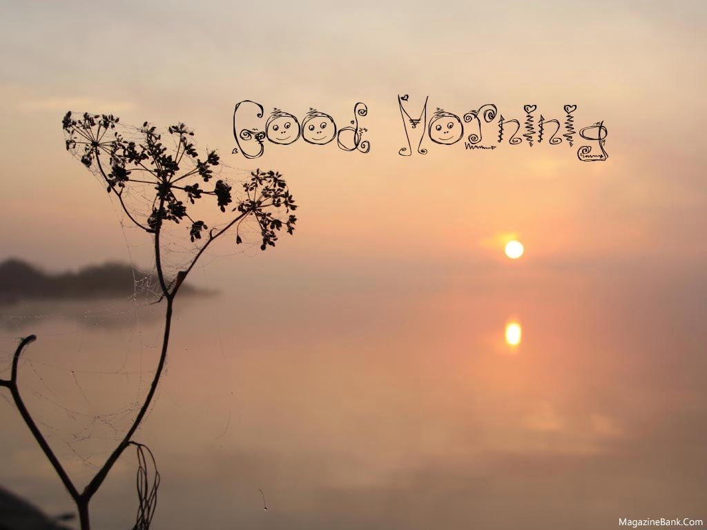 Good Morning Beautiful Photos : Good morning hand some quotes quotesgram