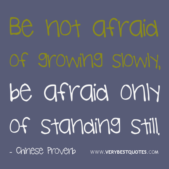 Quotes About Not Being Scared: Quotes About Being Afraid Of Change. QuotesGram