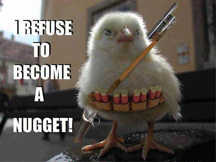 Chicken Quote: Quotes About Chicken Nuggets. QuotesGram