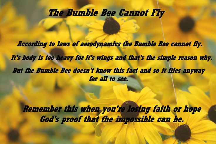 Bee Quotes: Bumble Bee Quotes. QuotesGram
