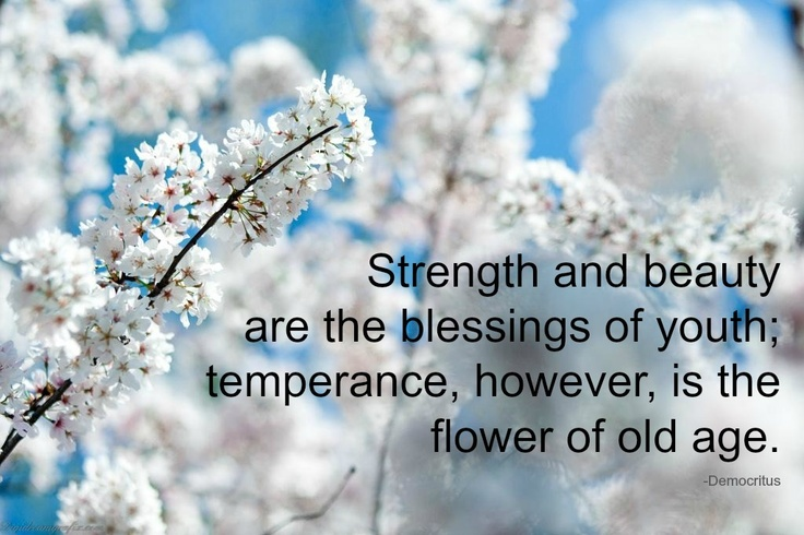 10 Rumi Quotes Ancient Wisdom For Today S Happiness: Old English Philosopher Quotes. QuotesGram