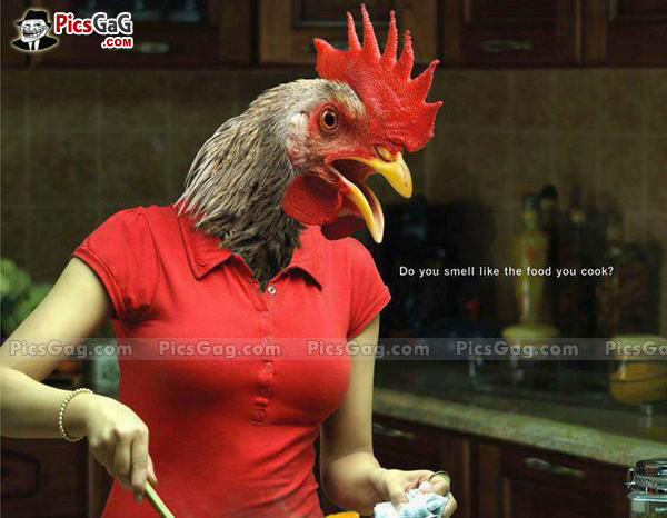 Funny Quotes About Chickens: Cooking Chicken Funny Quotes. QuotesGram