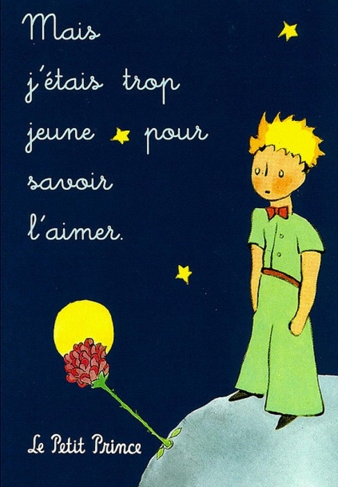 Le petit prince in english — pic 14