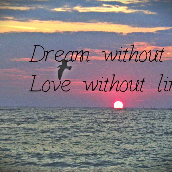 Dream Without Fear Love Without Limits: Without Limits Quotes. QuotesGram