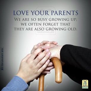 parent appreciation quotes quotesgram