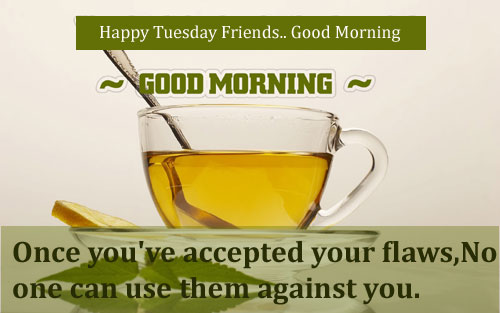 Happy Tuesday Funny Quotes. QuotesGram