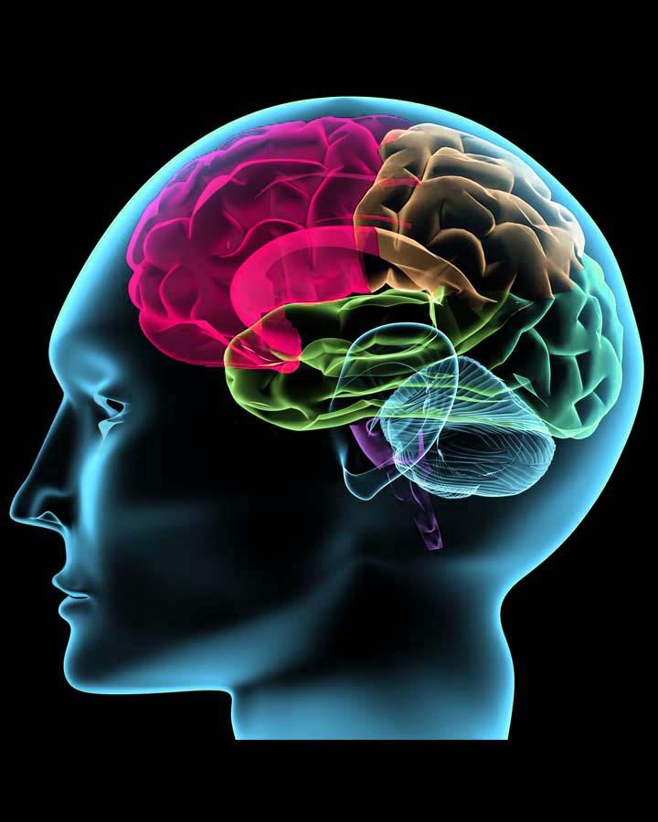 abnormal behavior what is it Only a few quantitative studies of abnormal behaviour have     inter-group variation in abnormal behavior.