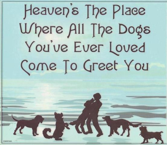 Quotes Long Lost Love Reuniting: Reunited In Heaven Quotes. QuotesGram