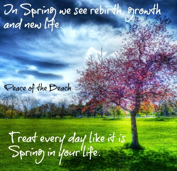 Inspirational Quotes About Positive: Spring Rebirth Quotes. QuotesGram