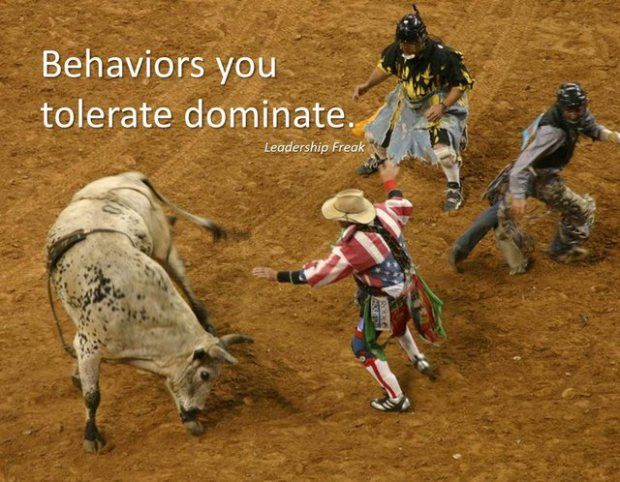 Funny Bull Riding Quotes: Bull Riding Inspirational Quotes. QuotesGram