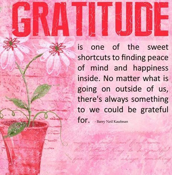 Inspirational Quotes About Gratitude: Inspirational Quotes Gratitude. QuotesGram