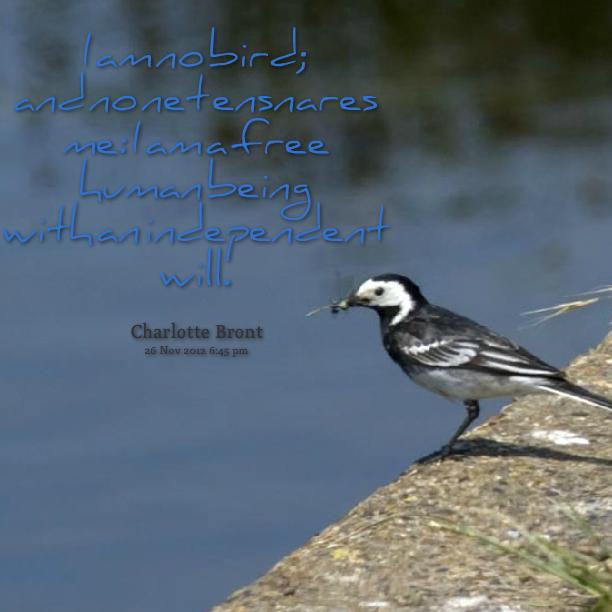 I Am Free Bird Free As A Bird Quotes....