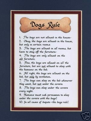 funny dog quotes and poems quotesgram