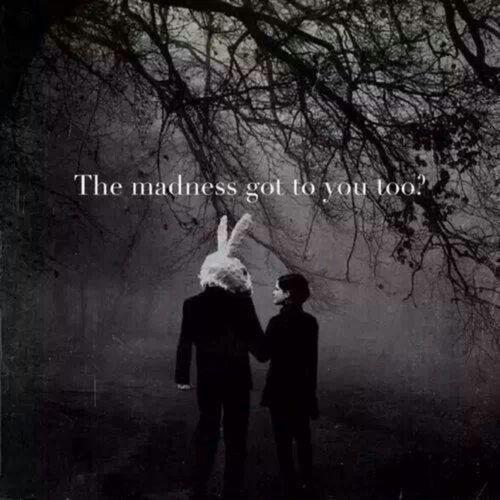 Alice In Wonderland Quotes Tumblr: Dark Rabbit Hole Alice In Wonderland Quotes. QuotesGram