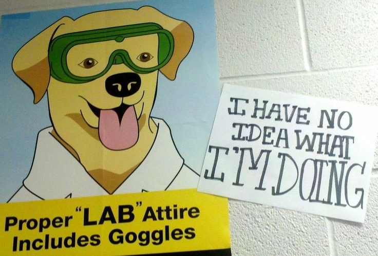 science lab safety quotes quotesgram