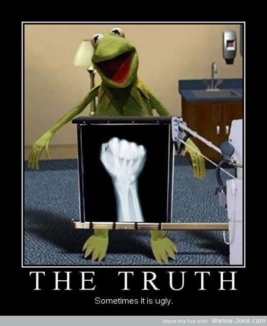 Muppet Quotes Life Quotesgram: Radiography Quotes. QuotesGram