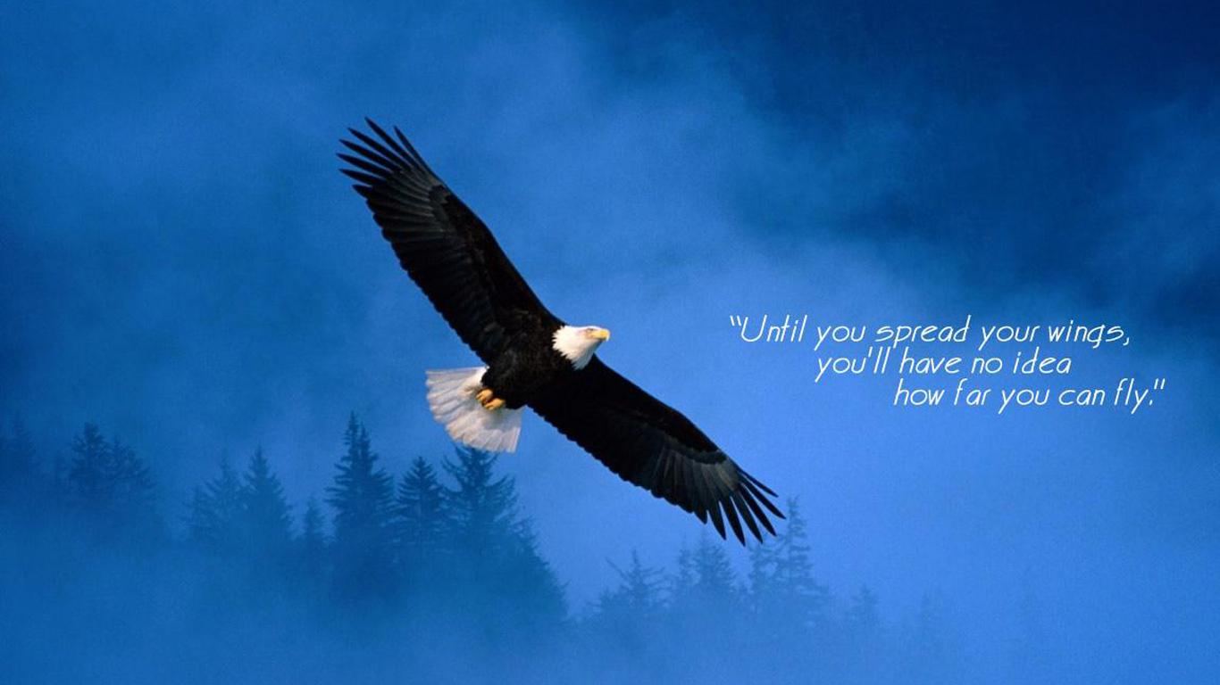 Quotes About Love And Birds Quotesgram: Bird Soaring Religious Quotes. QuotesGram