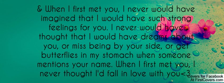 When I Met You Quotes. QuotesGram