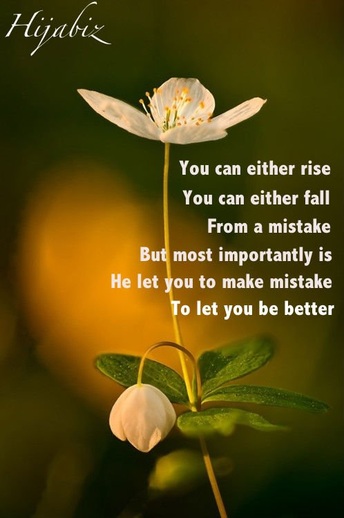 Image Result For Islamic Quotes For Life