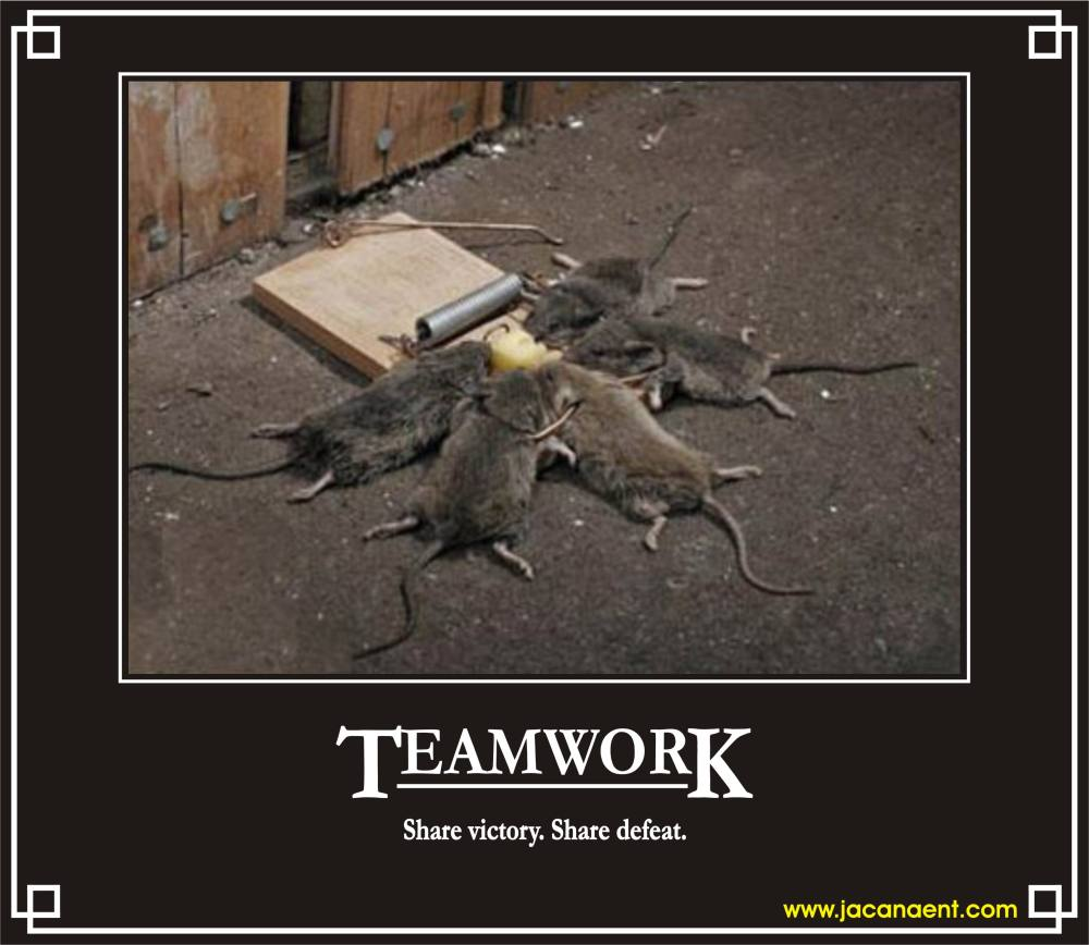 Teamwork Office Funny Quotes Quotesgram