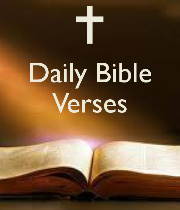 Daily Bible Quotes Text: Daily Bible Quotes For Women. QuotesGram