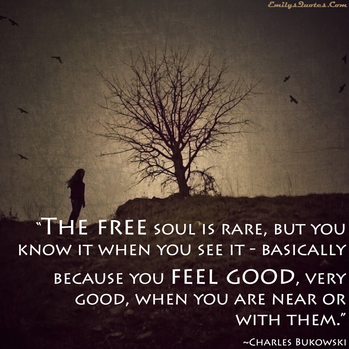 12 Inspirational Quotes For The Soul: Good Soul Quotes. QuotesGram