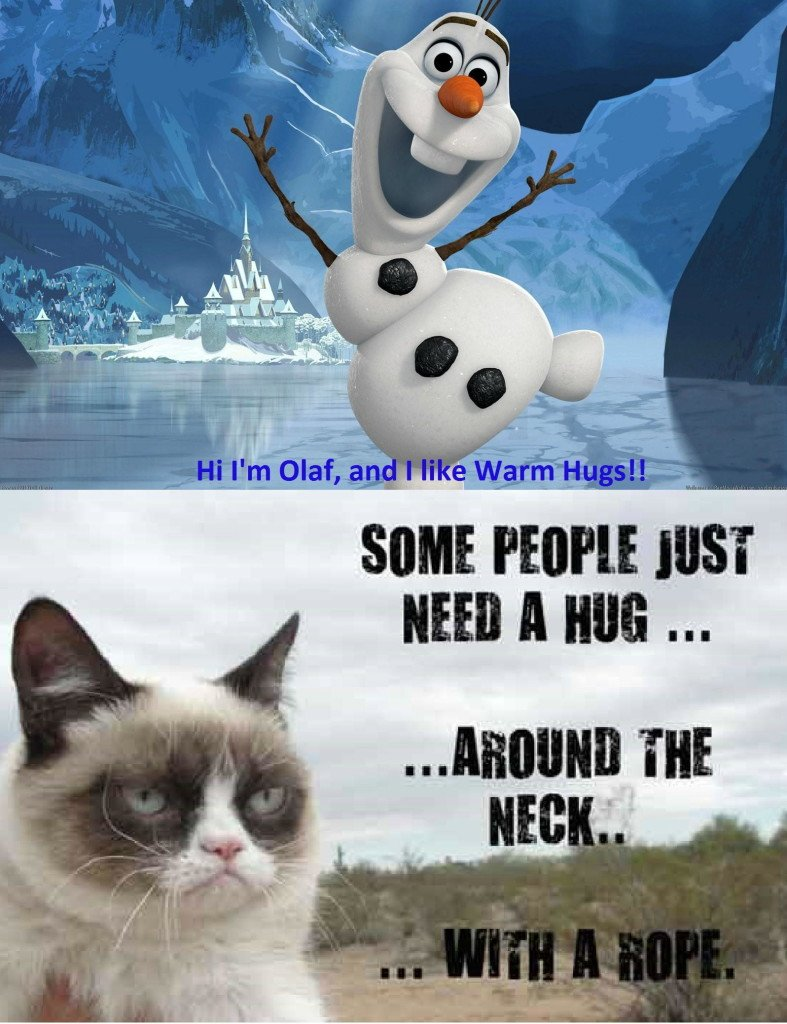 Grumpy Cat Quote Pictures