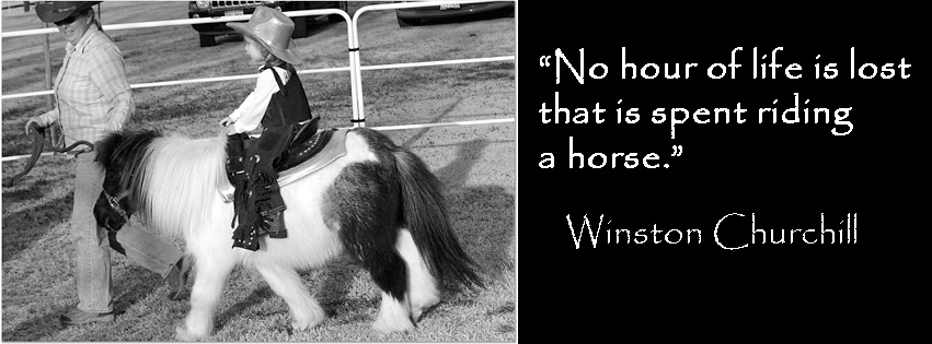 winston churchill horse quotes  quotesgram