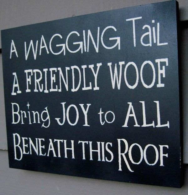 Cute Dog Grooming Quotes Quotesgram