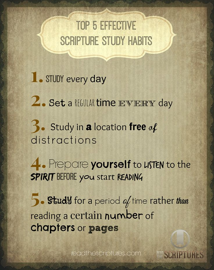 how to study bible scriptures