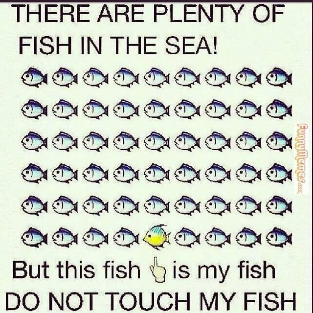 fish in the sea dating quotes Don't worry, 'there's plenty of fish in the sea' don't worry there's plenty more out there take advantage of this freedom by serial dating and having fun.