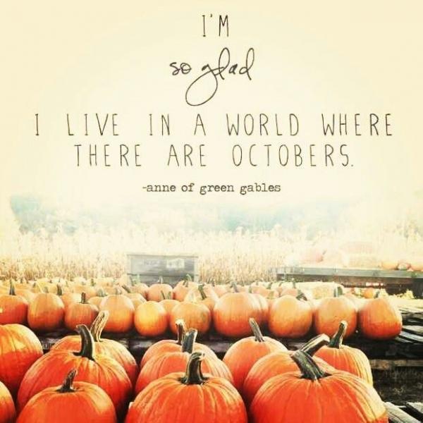 Autumn Phrases: Funny Fall Quotes Autumn. QuotesGram
