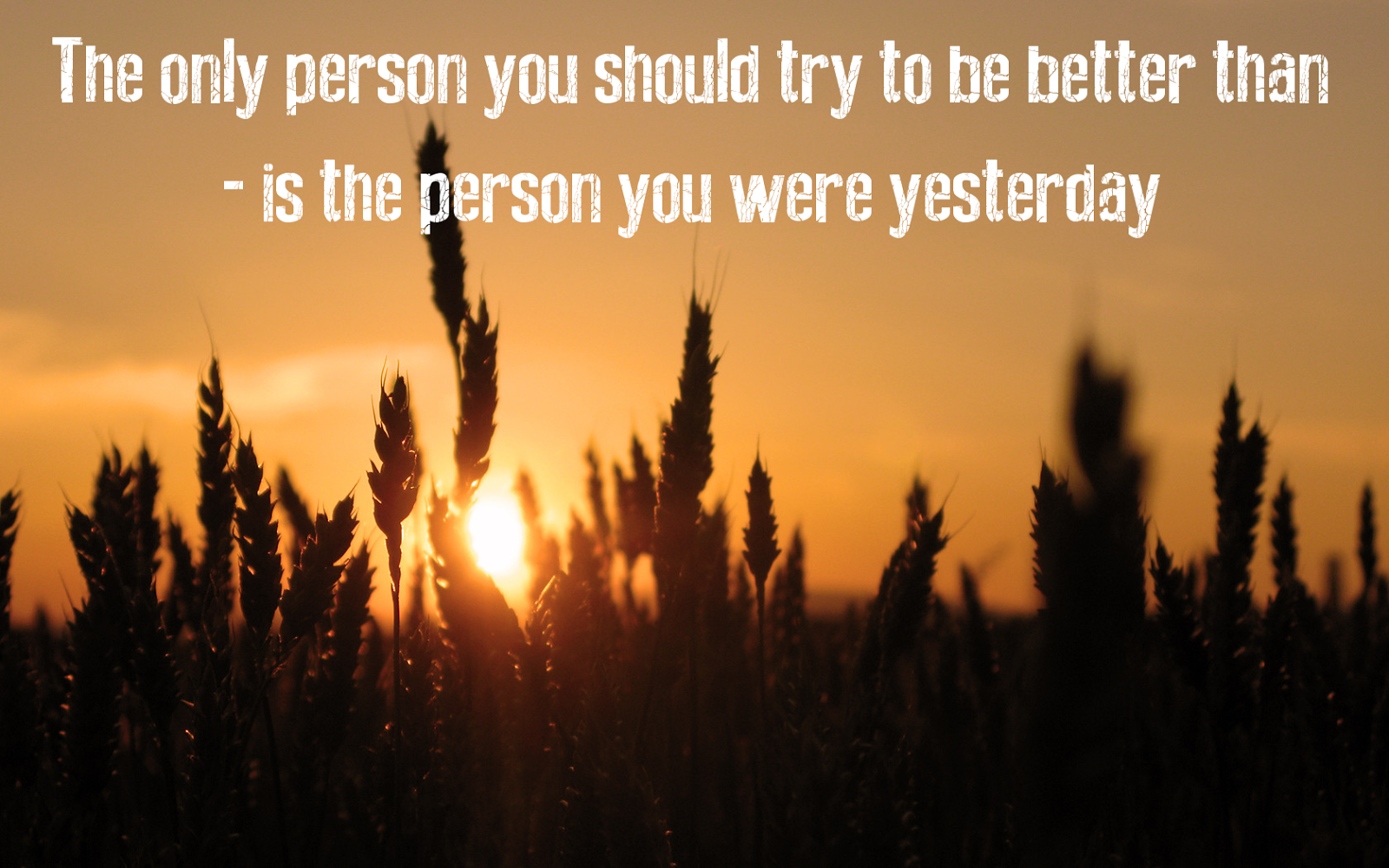 Trying To Be A Better Person Quotes. QuotesGram