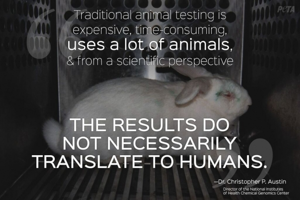 why animal testing is necessary essay Free example persuasive essay on animal experimentation: throughout history, animal experimentation has played an important role in leading to new discoveries and human benefit however, what many people tend to forget are the great numbers of animal subjects that have suffered serious harm during the process of experimentation.