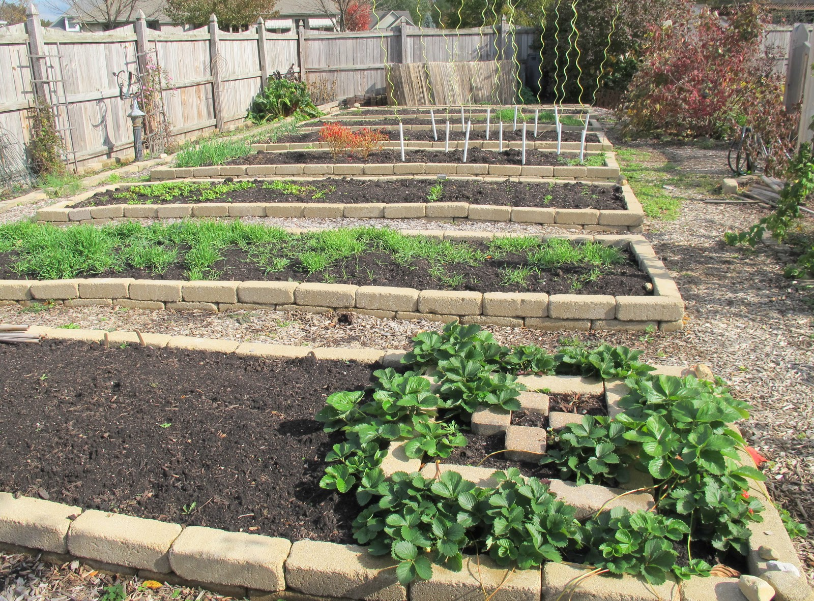 Vegetable garden quotes quotesgram for Vegetable garden bed design