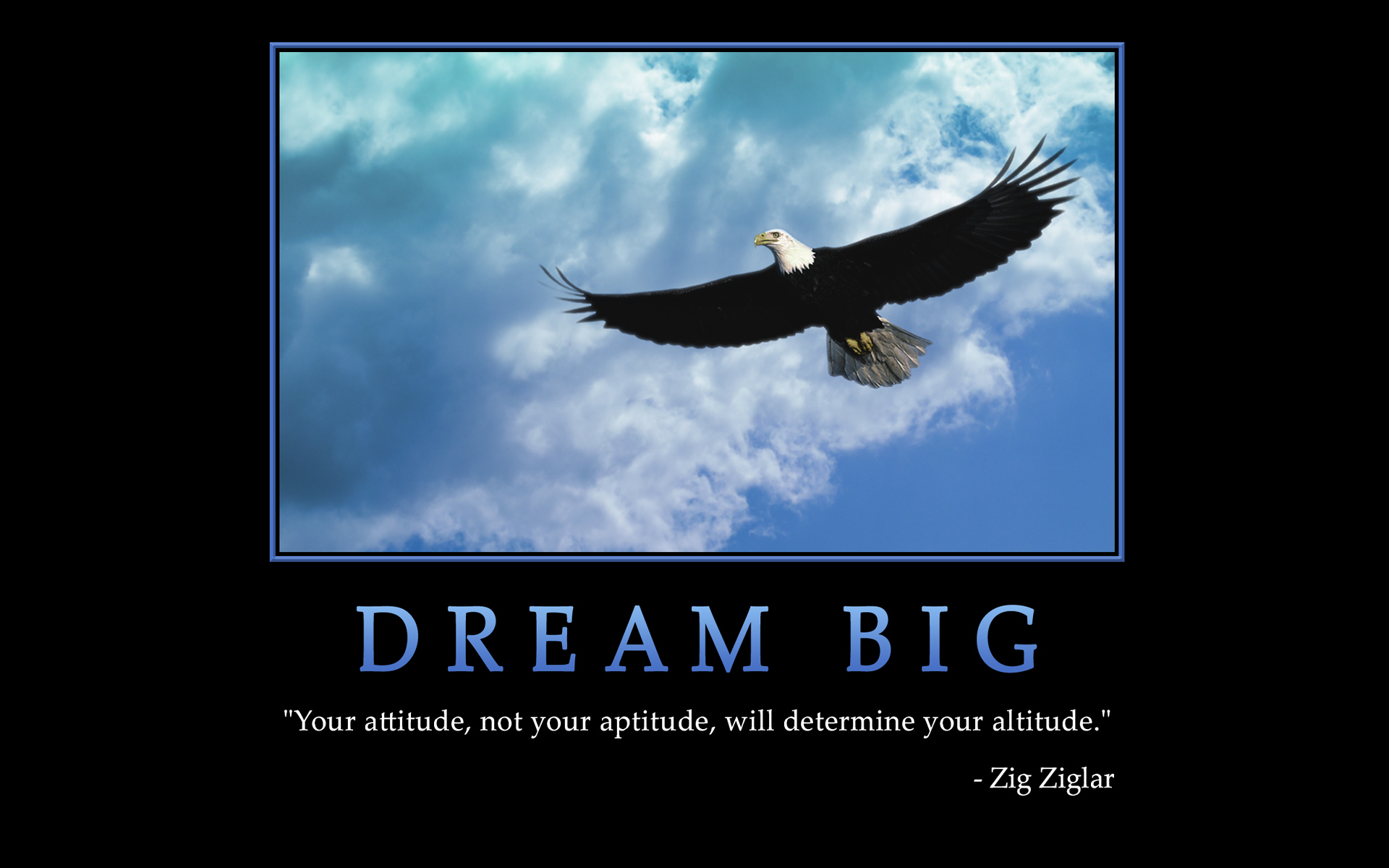 Eagle Leadership Quotes Quotesgram
