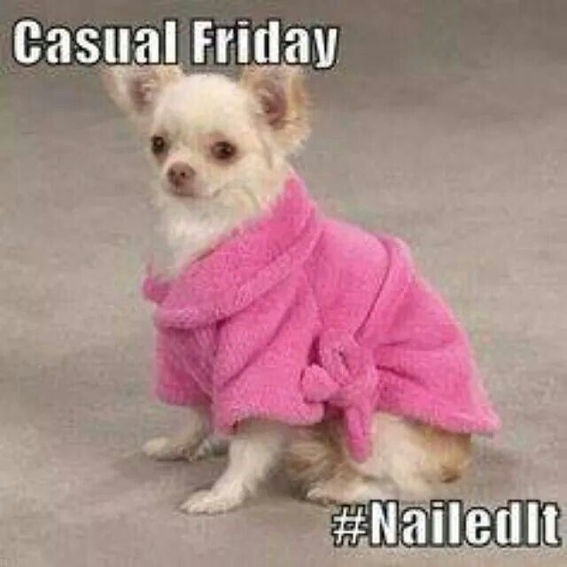 Funny Pictures About Friday: Casual Friday Quotes. QuotesGram