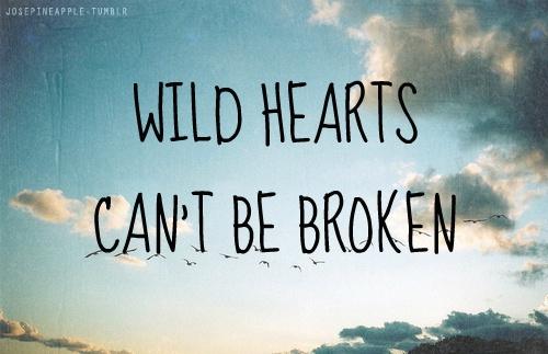John Eldredge Wild At Heart Quotes Quotesgram: Wild Hearts Can't Be Broken Quotes. QuotesGram