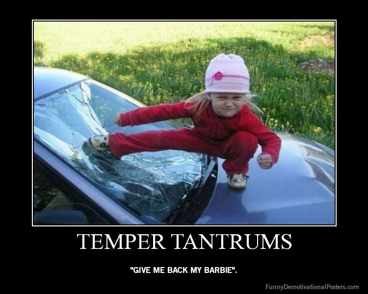 temper tantrum funny quotes quotesgram