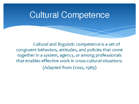 Diversity Standards: Cultural Competency for Academic Libraries (2012)