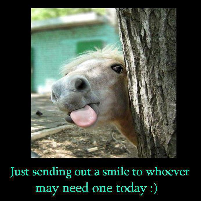 great day funny quotes quotesgram