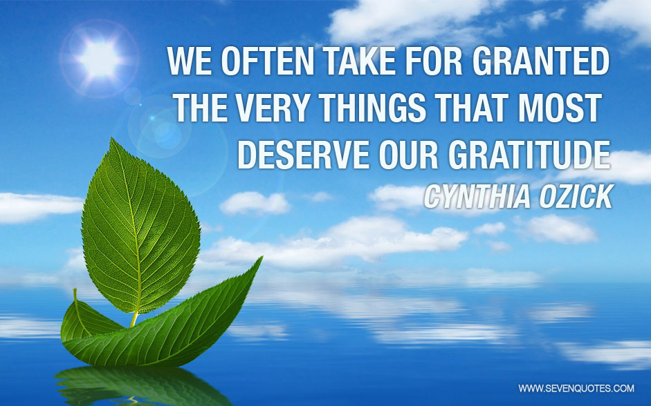 Quotes Taking For Granted: The Things We Take For Granted Quotes. QuotesGram
