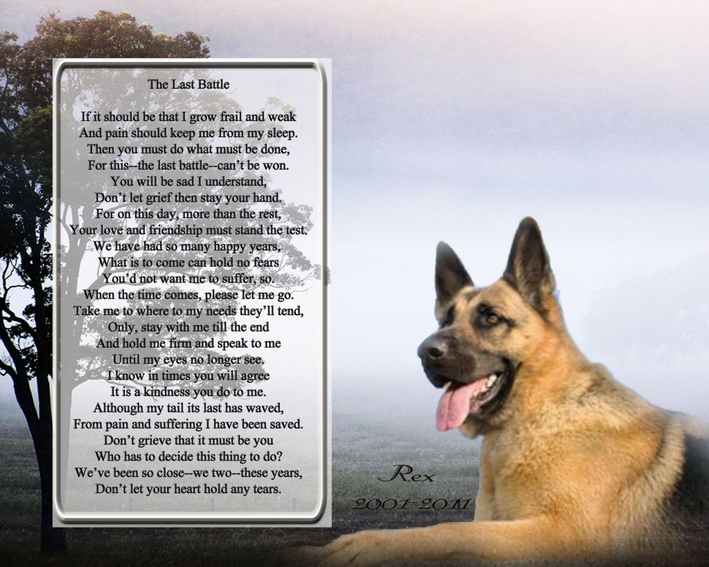 Fathers Day Poem From Dog