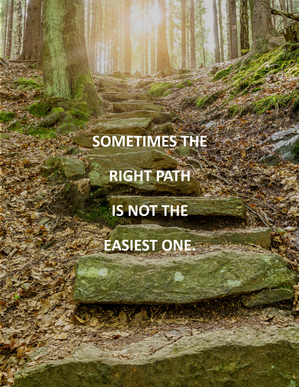 Choose the right path in life essay