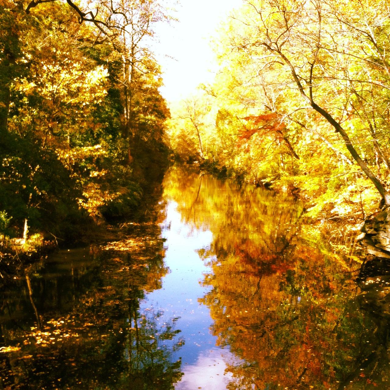 Beautiful Autumn Day Quotes. QuotesGram