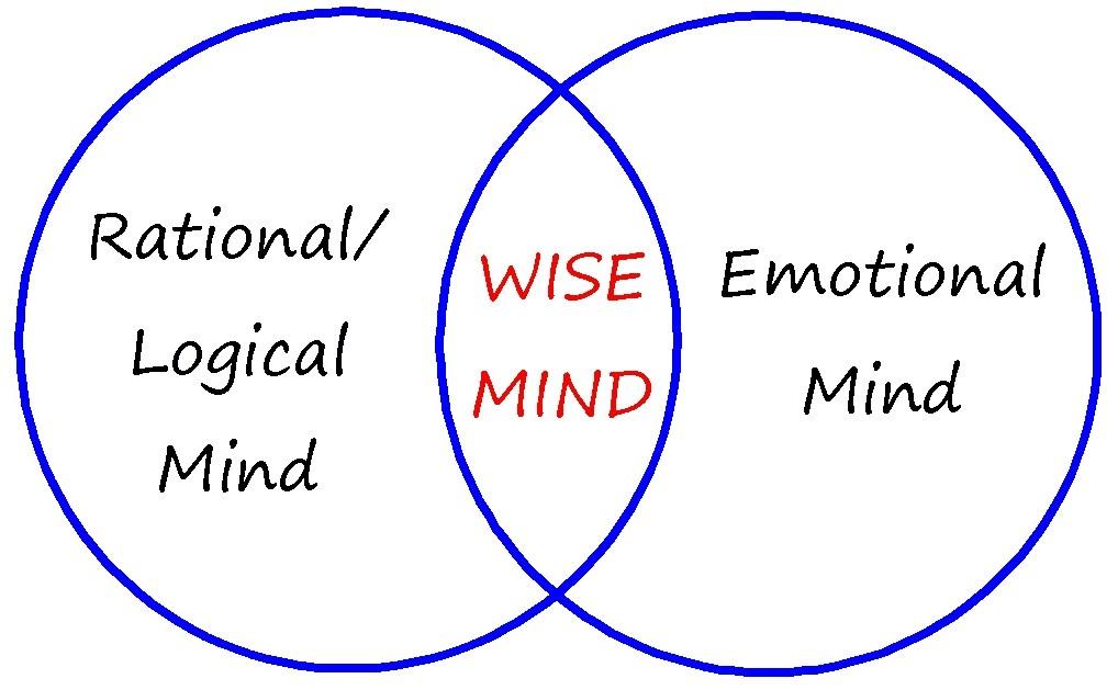 Wise Mind Quotes Quotesgram