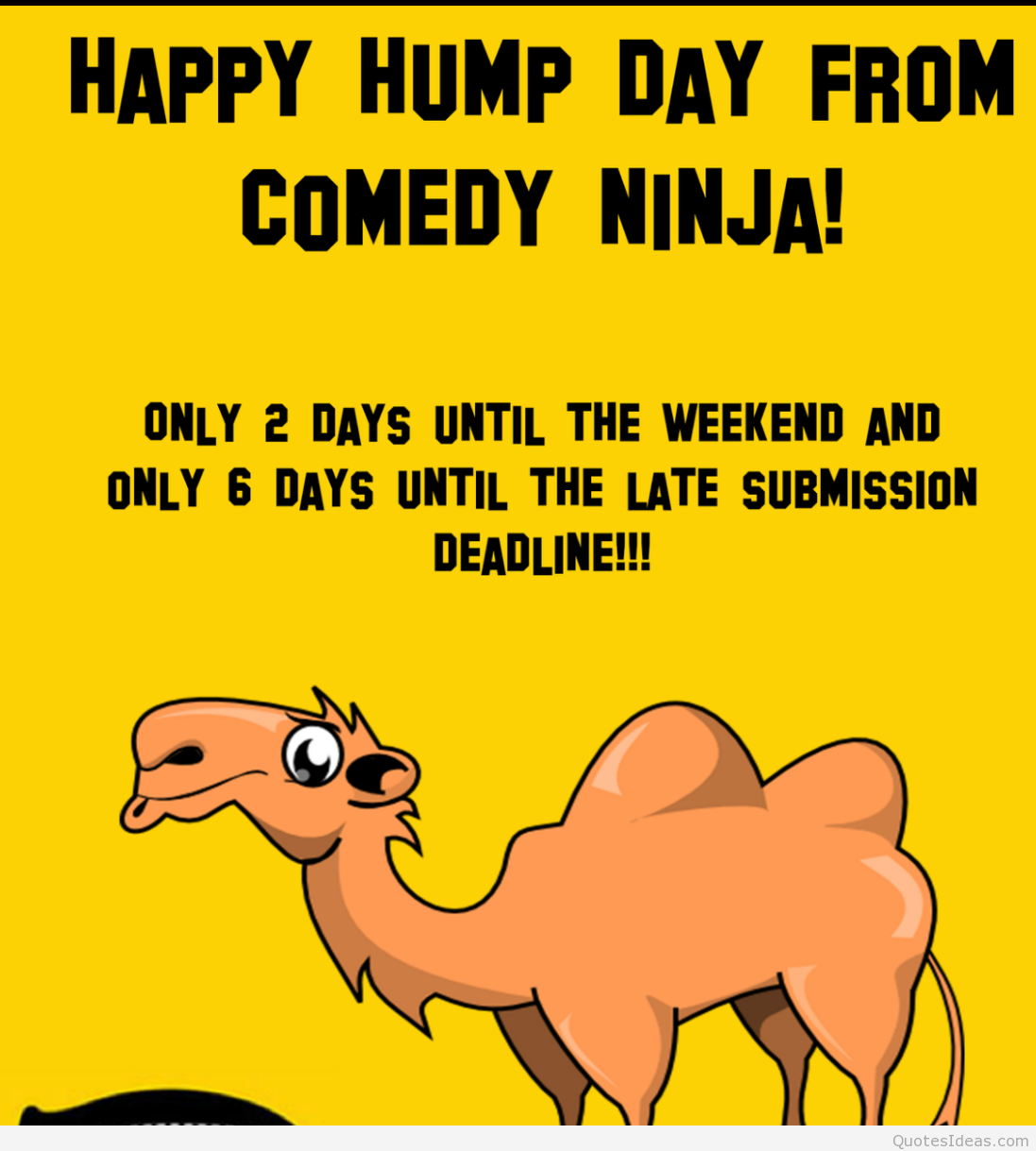 Sayings Happy Day: Happy Hump Day Funny Quotes. QuotesGram