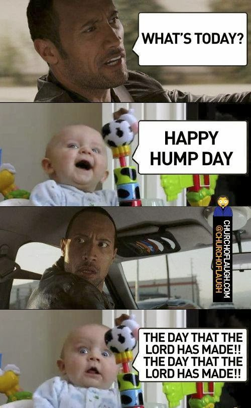 Happy Hump Day Meme Funny : Happy hump day funny quotes quotesgram